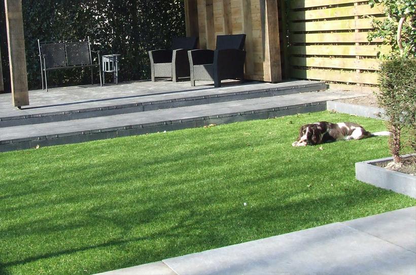 kunstgras-spelende-honden